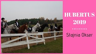 HUBERTUS 2019 - Stajnia Okser Szafarnia || 09.11.2019 🦊🏇