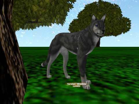 Games Similar To Wolf Quest