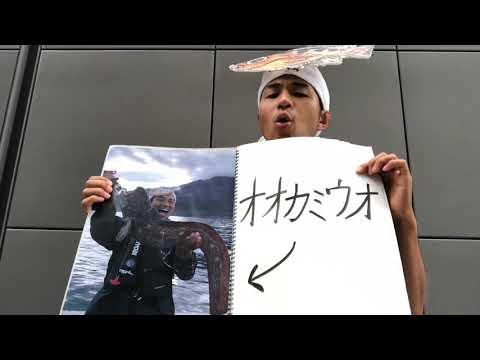 オオカミウオを釣って食べた思い出〜長渕剛さんのとんぼにのせて〜