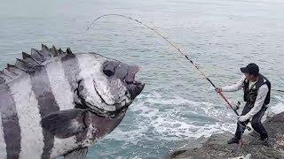 Christmas Striped Beach Fishing! A Huge bite?