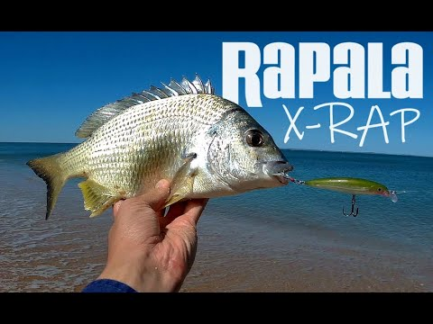 Rapala X-Rap XR8 Lure Fishing at Margate Beach, Redcliffe