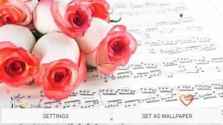 love roses hd live wallpaper