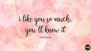 I Like You So Much, You'll Know It - Ysabelle Cuevas Lyric A Love So Beautiful OSTwidth=