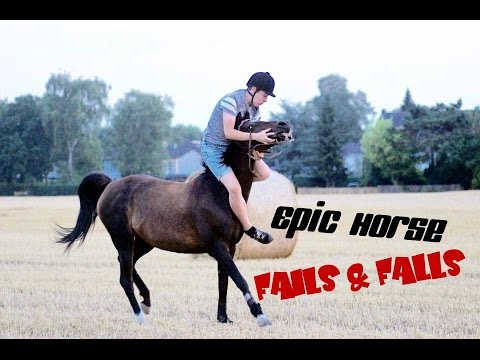 Download Epic Horse Fails & Falls | Youtube-Rider 2016 | *MUST SEE*