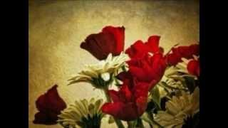 Chehra Tera Kitabi [Full Song] (HD) - Kasam
