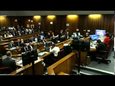 Expert for the Defence Sounds Off @ Pistorius Trial