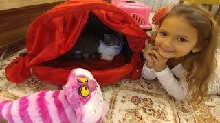Новый домик для кошки.Красный шатер для Алины.Видео для детей.Игра для детей.