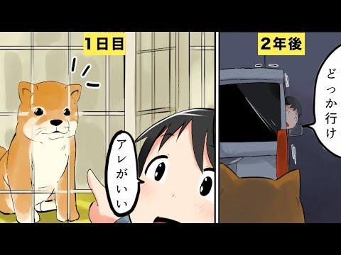 【漫画】捨て犬になるとどうなるのか?/保健所の実態【マンガ動画】