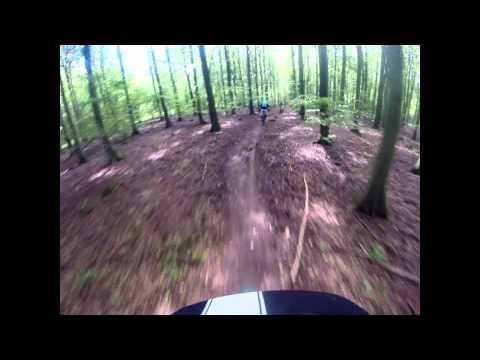 Doris & Bert, Friston Forest MTB Trails