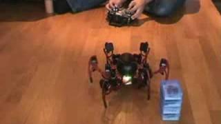 Balancing Phoenix hexapod