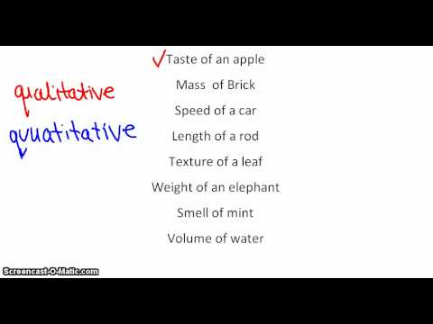 Qualitative and Quantitative Data - YouTube