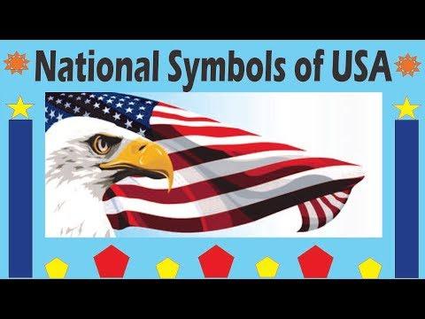 National Symbols Of United States Of America Usa Youtube