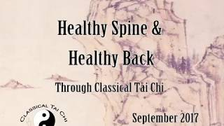 Tai Chi Exercises for Lower Back Pain. Improve Your Spine & Back