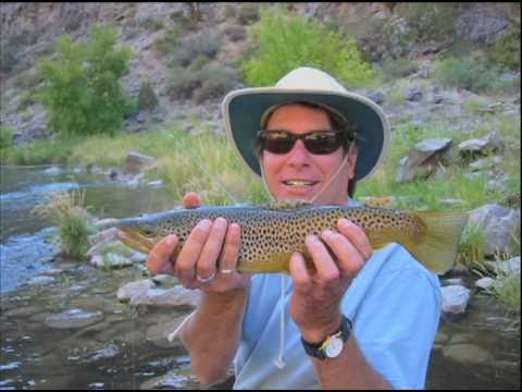 Rigs Fly Shop & Guide Service Ouray Ridgway Colorado