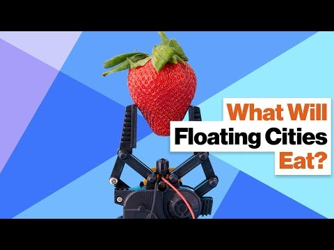 No Food, No Utopia: How Will Floating Cities Survive?
