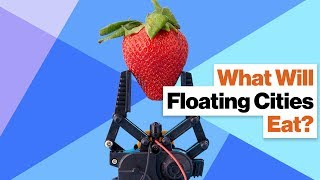 No Food No Utopia How Will Floating Cities Survive