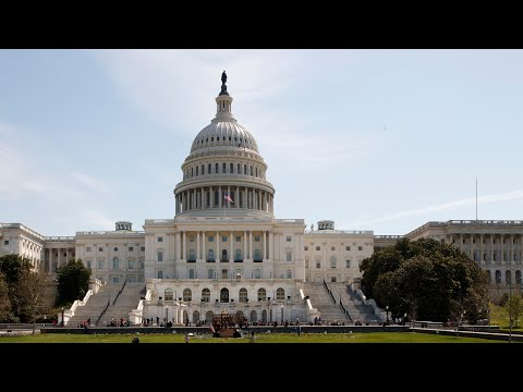 Olympic community CEOs appears before Congress