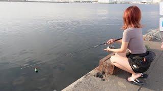 近所の海で○○釣りに挑戦してみた。