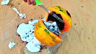 Papaya VS Molten Aluminium | RED HOT🔥🔥1000 °C |