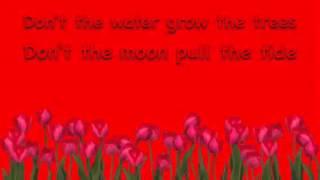 Austin Mahone- All I Ever Need (lyrics)