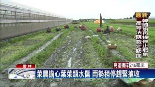 雲林凌晨下暴雨 農民憂淹水整夜守菜園-民視台語新聞