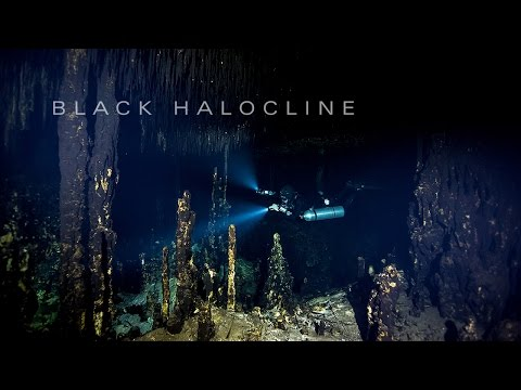 Black Halocline