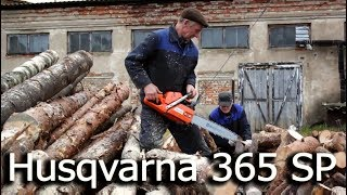 Husqvarna 365 SP | Video test DSLR Canon EOS 600D + Kit Lens EF-S 18-55mm | Распиловка бензопилой