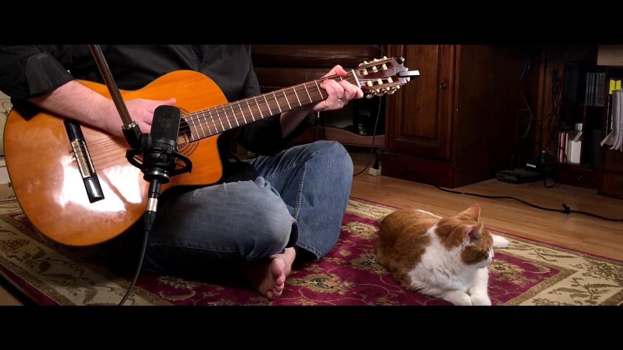 Hurt - (Johnny Cash, Nine Inch Nails) - Fingerstyle Guitar - Scott ...