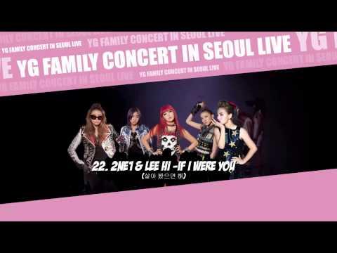[YG FAMILY CONCERT] 22. 2NE1 & Lee Hi - If I Were You [YG FAMILY CONCERT IN SEOUL LIVE - 2014]