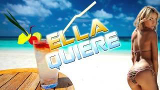 [Electro] Ella Quiere Hmm Haa Hmm - Remix BlizzordMusic