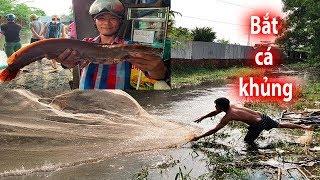 Khó tin bắt cá KHỦNG ở Sài Gòn lại dễ như xứ Miền Tây sông nước - Fishing in Saigon