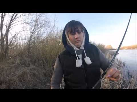 Download — Ловля карася и карпа поплавочной удочкой на керосин и колбасу