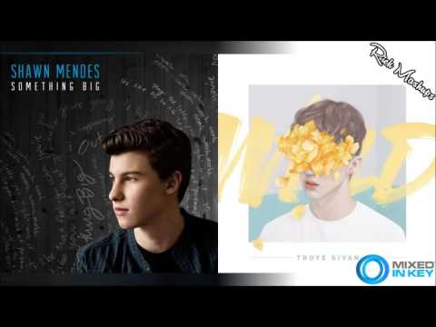 Something Wild - Shawn Mendes & Troye Sivan (Mashup)