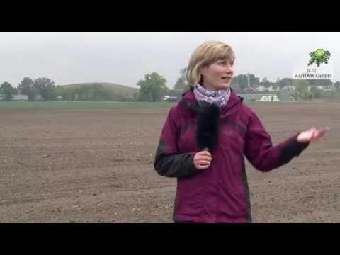 27. Feldexkursion: Jetzt noch Weizen drillen? - NU Agrar, 21.10.2015