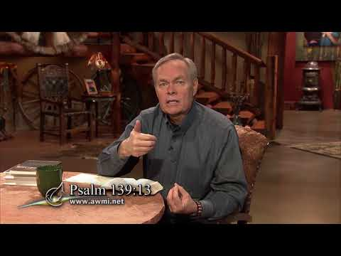 Excellence: How To Pursue An Excellent Spirit - Week 1, Day 1 - The Gospel Truth