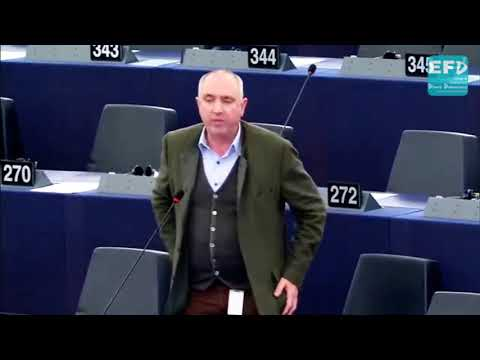 Dutch breaching EU rules with 28% of beam trawlers equipped for electro-fishing - Stuart Agnew MEP