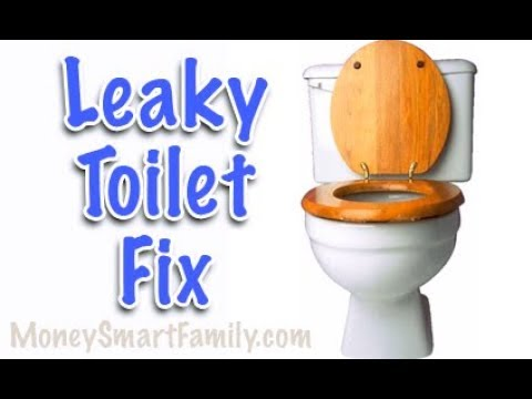 Toilet Repair 101 How To Fix A Leaky Toilet Replace A