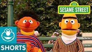 Sesame Street: Bert and Ernie Go Pretend Swimming