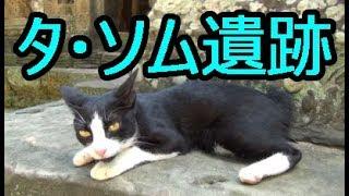 ネコが可愛いかったタ・ソム遺跡Ta Som ប្រាសាទតាសោម