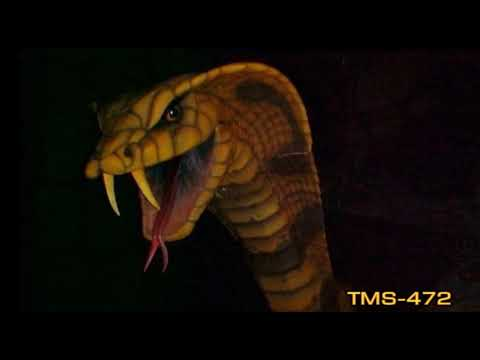Youtube Indiana Jones Adventure, Temple Of The Forbidden Eye