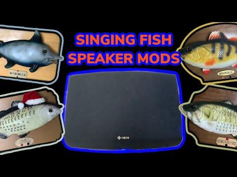 Singing Fish - SPEAKER MOD COMPILATION