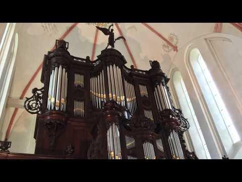 Improvisatie psalm 146 (Zuidbroek) - Vincent de Ridder