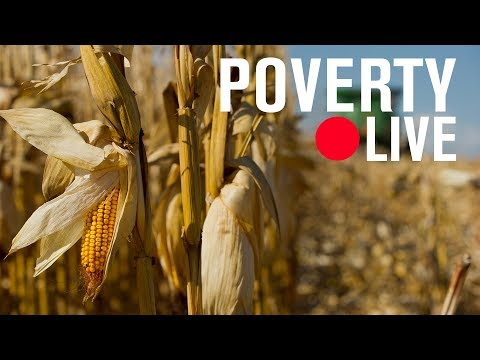 Do farm programs affect the nutrition of poor Americans? | LIVE STREAM