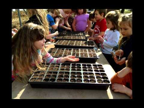 Oak Run Elementary School and Garden Project 2013-2014