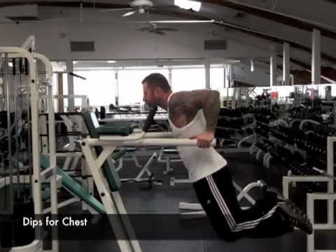 dips for chest or triceps by jim stoppani youtube