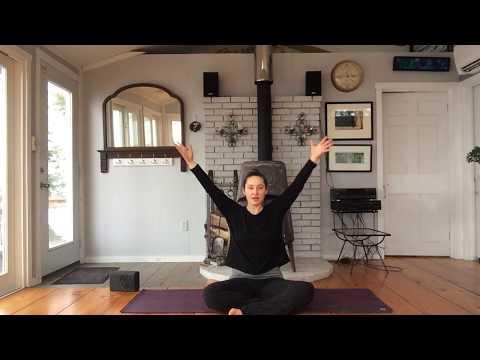 beginner-yoga---hatha-flow