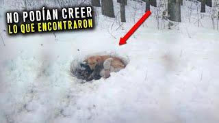 Subieron a la montaña y LO QUE ENCONTRARON en la nieve es de no creer...