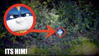 I FOUND SNOWBALL IN REAL LIFE! *Secret Life of Pets 2*