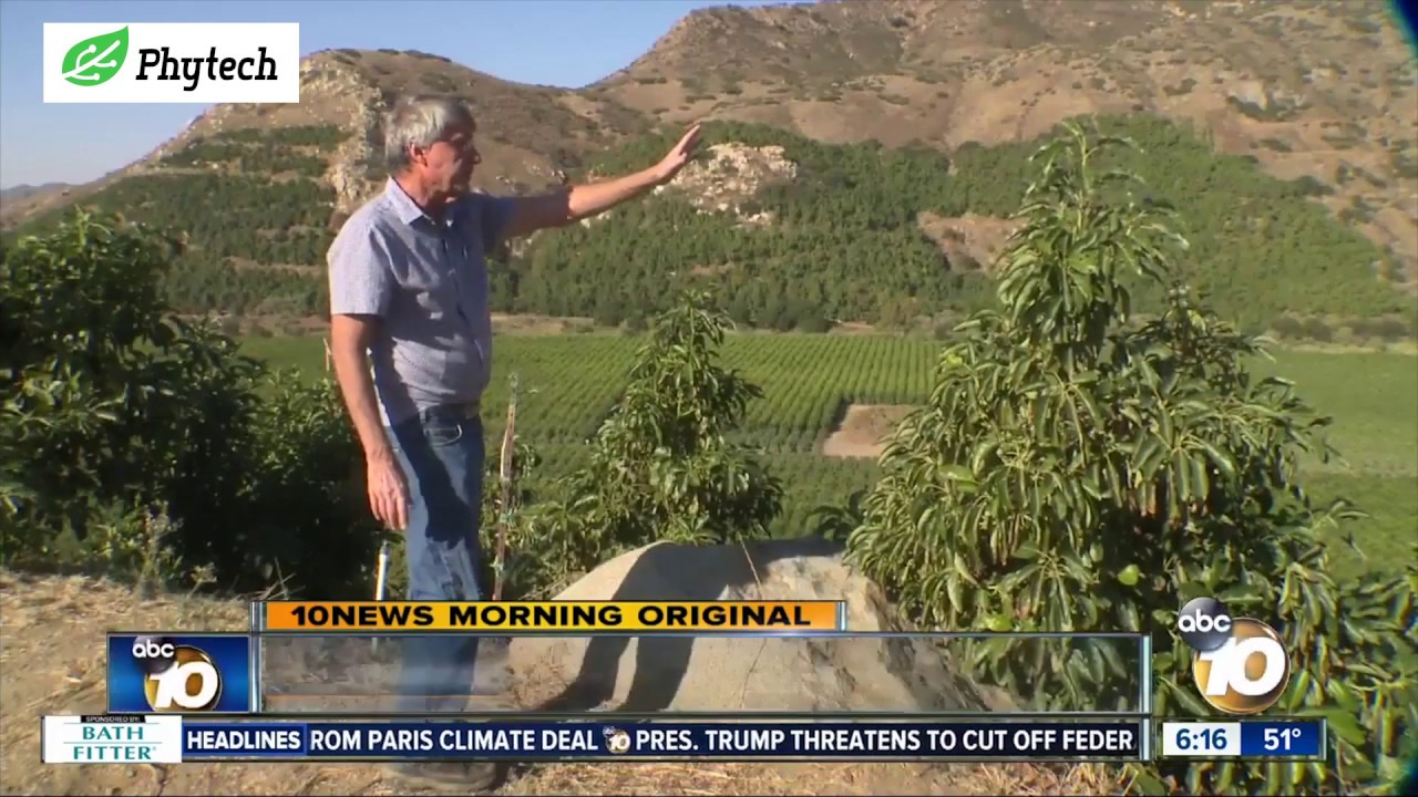 Phytech helps farmers in San Diego fight climate change and save water. See it in the morning news