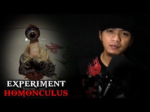 5 Experiment HOMUNCULUS Yang Menghasilkan Spesies Makhluk Aneh | Seputar Horror